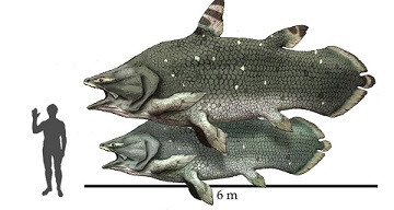Coelacanths-giant_ancient.jpg