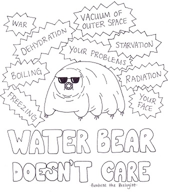 Water Bear Does not Care