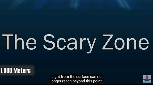 scary zone.png